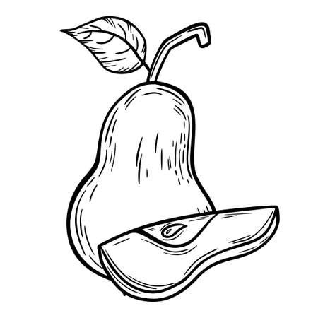 Pear sketch. Delicious and healthy fruit. Sketch. For your design. Vektoros illusztráció