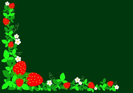strawberries with sheets on dark green background photo