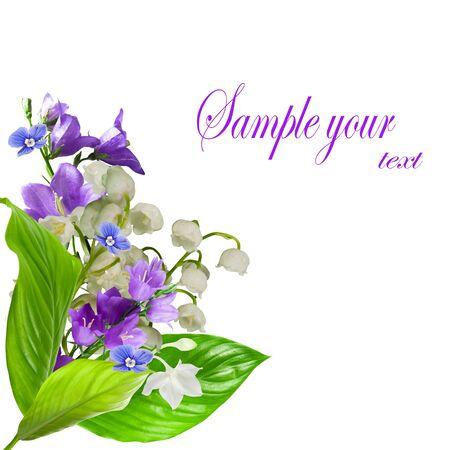 lirio blanco: flores de ramo aislados sobre blanco Foto de archivo