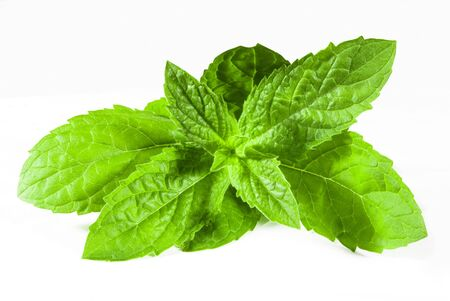 Green spearmint macro closeup isolated over white Stock Photo - 7828158