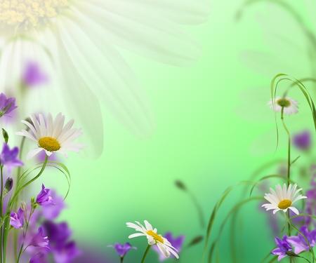 daisywheel: blue campanulas with daisywheel on green background