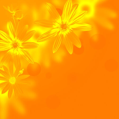daisywheel: yellow flowers daisywheel on green