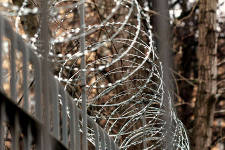 no boundaries: Barbed wire on fence at autumn cloudy day