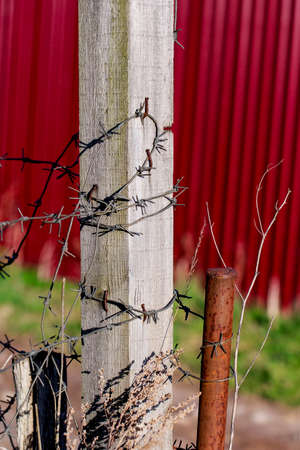 Barbed wire on wooden pole at sunny day photo