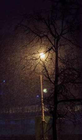 winter evening: Winter evening snowstorm and flashlight next to tree Stock Photo