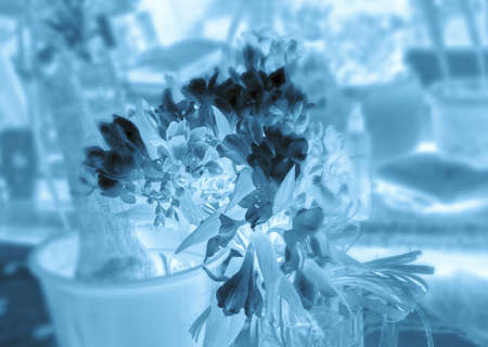 inversion: Freesia bouquet in shades of blue processing with inversion