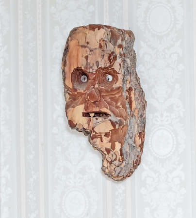 face in tree bark: Cute funny wall mask from bark of tree