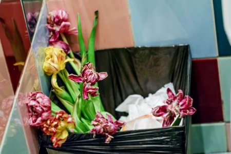 toilette: Flowers of tulip bouquet in bin in toilette