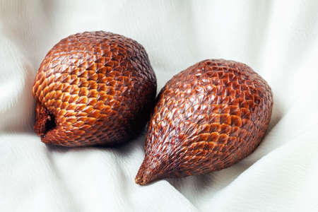 Salacca zalacca fruit from east and south on light background