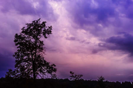 Lilla pink dark sky before stormy weather at summer  Stock Photo