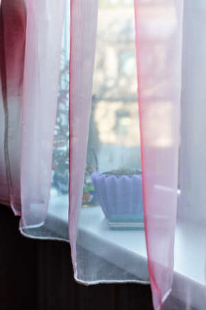 Transparent pink curtain on window at day room Stock Photo