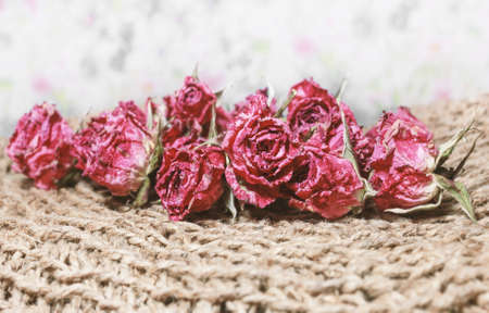 Dry red roses for nostalgie and intimate mood of past Stock Photo