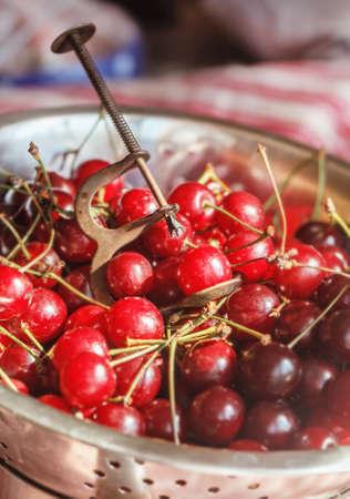 Old vintage device to clean bones cherry