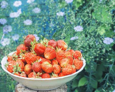 Red fresh ripe strawberries and blue pretty flowers of flowering flax