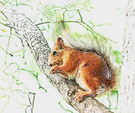Pretty squirrel on tree effect as painting of computer picture