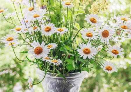 Pretty bouquet of summer daisies in vase