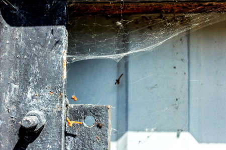 Web on old iron fence at sunny weather Stock Photo - 114741950