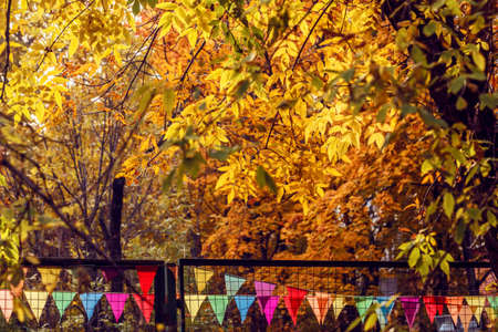Sunny gold autumn leaves and colorful flags in park Stock Photo - 114741954