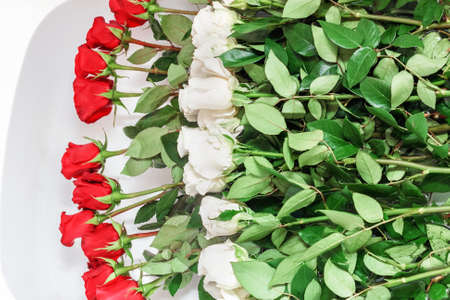 Pretty red and white roses in bathrom for good mood
