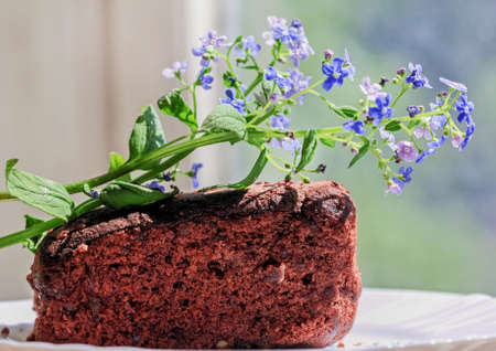 Fresh brownie homemade cakes and blue flowers at sunny day