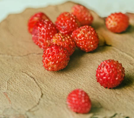 Best ripe fresh wild strawberry berries on lighty brown tree bark