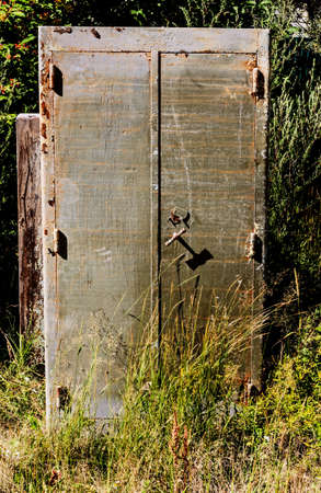 Old metal cabinet among grass at summer day mystery Standard-Bild