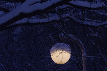 Round lantern in snow in winter park in evening magic mood