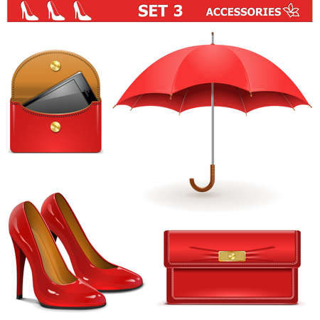 clutch cover: Vector Female Accessories Set 3 Illustration