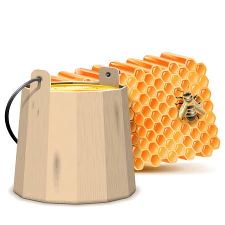 beekeeping: Vector Barrel with Honeycombs isolated on white background Illustration