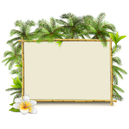 bamboo frame: Vector Bamboo Frame with Palm isolated on white background