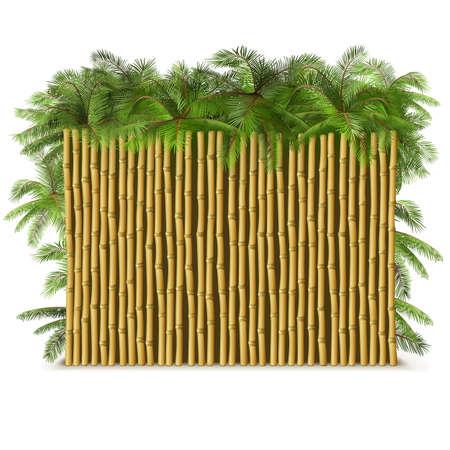 Vector Bamboo Fence met Palm op een witte achtergrond Stock Illustratie