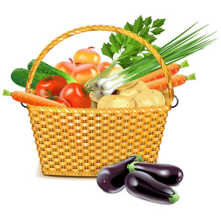 wicker basket: Vector Wicker Basket with Vegetables isolated on white background