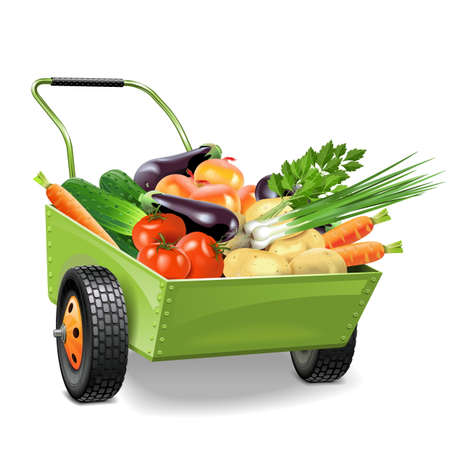 bogie: Vector Wheelbarrow with Vegetables isolated on white background Illustration