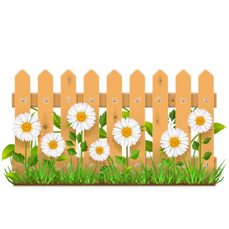 balk: Vector Wooden Fence with Camomiles isolated on white background