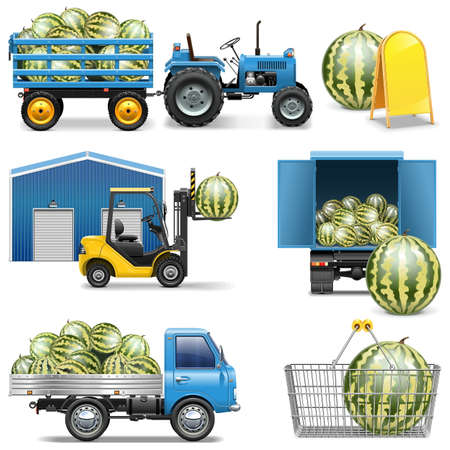 Vector Watermelon Shipping Icons isolated on white background