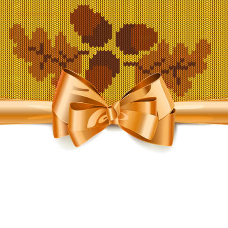 Gift Bow with Autumn Knitted Pattern 3 isolated on white background