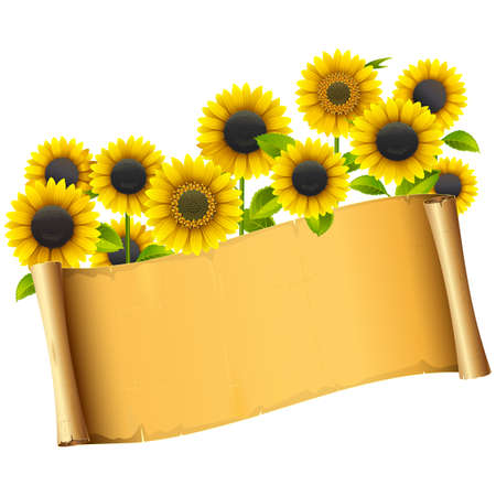 Paper Placard with Sunflowers isolated on white background