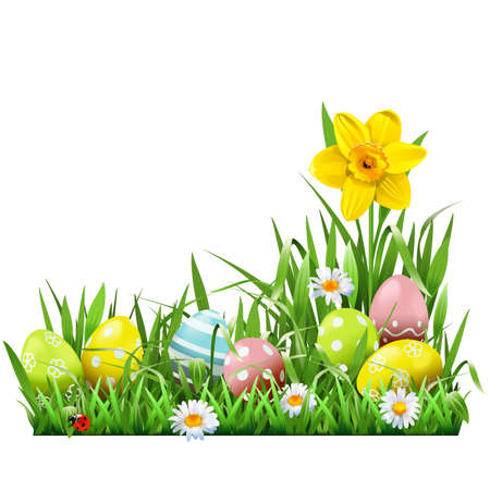 Vector Easter Concept with Narcissus isolated on white background
