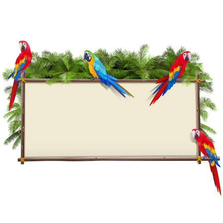 Vector Board with Tropical Parrots isolated on white background Ilustração