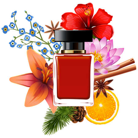 Vector Perfume with Ingredients isolated on white background Banco de Imagens - 157427331