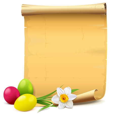Easter Paper Scroll with Narcissus Illustration