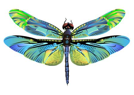 kleur kunst libel natuur wildlife vlieg