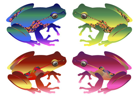 single eyed: frog toad green small illustration color