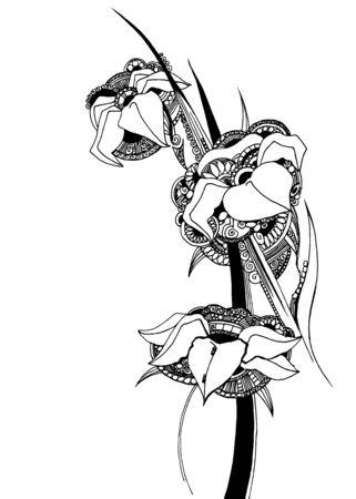flower graphics drawing unusual petal bud decor