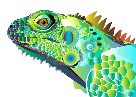 jungle vines: Chameleon cartoon character isolated on white background