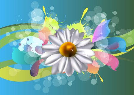 marguerite: flower floral white summer chamomile plant Illustration