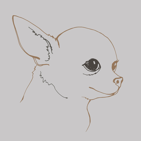 dog vector small drawing illustration animal cute