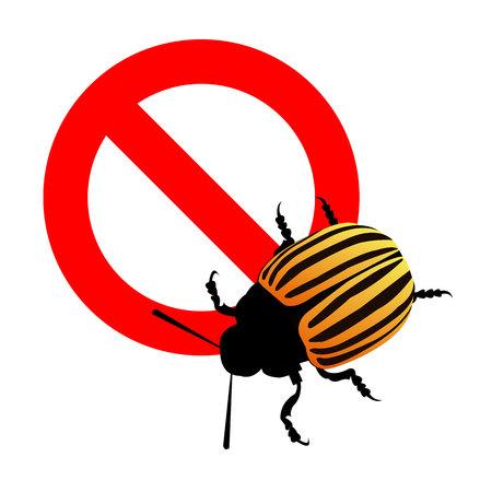 illustration nature potato colorado vector animal beetle Illustration