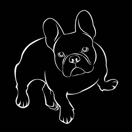 dog vector breed cute pet animal bulldog Illustration