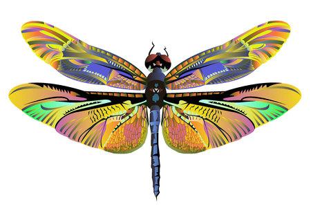 Vettore di arte a colori natura libellula volare Vettoriali